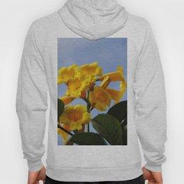 real yellow blossom Hoody