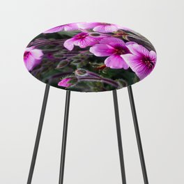 Beauty on The Rock Counter Stool