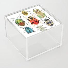 Beetle Compilation Acrylic Box