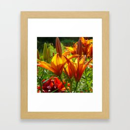 Iris Flowers - For a beautiful day Framed Art Print