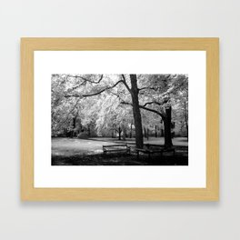 Park Bench I Framed Art Print
