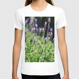 Lavender T-shirt