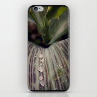magic the gathering iPhone & iPod Skins featuring Morning Gathering by KunstFabrik_StaticMovement Manu Jobst