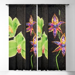 Australia Orchid Cooktown Queen of Sheba Flowers Stems  Blackout Curtain