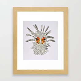 bird with white feathers Framed Art Print