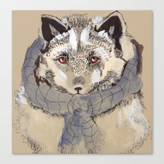 Silver Fox Canvas Print