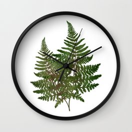 Painted Ferns Wall Clock