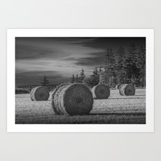 Harvest Field with Hay Bales at Sunset on Prince Edward Island Art Print