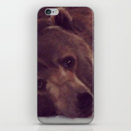 Ursus Major iPhone Skin