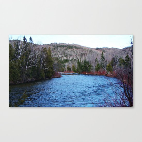 River in Nature Canvas Print