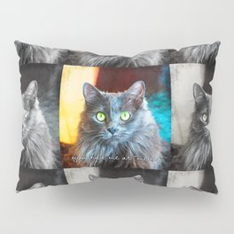 Fluffy grey cat close-up   You had me at meow Pillow Sham