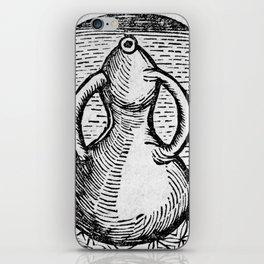 Alchemical apparatus. 'The pelican' iPhone Skin