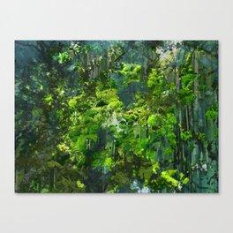 Canopy  Canvas Print