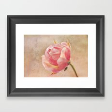Pretty Little Rosebud. Framed Art Print
