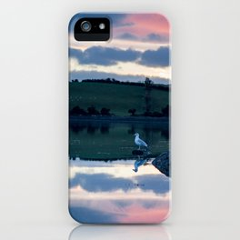 Perched on Strangford Lough iPhone Case