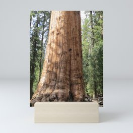 Summertime Sequoia Mini Art Print
