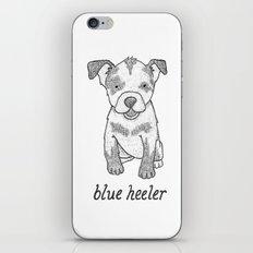 Dog Breeds: Blue Heeler/Australian Cattle Dog iPhone & iPod Skin