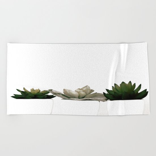 Lovely green cactus - cacti in white pots on a white background Beach Towel