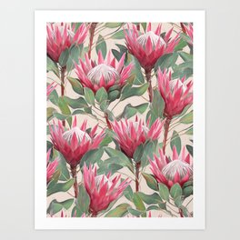Painted King Proteas on cream Art Print