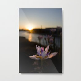 Caught in the Light Metal Print