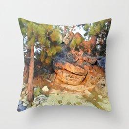 Sunset on the Rocks - Tahoe Throw Pillow