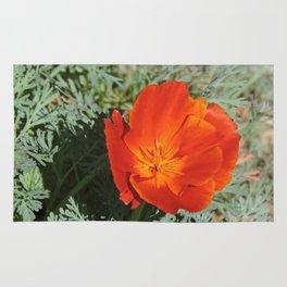 California Poppy Rug