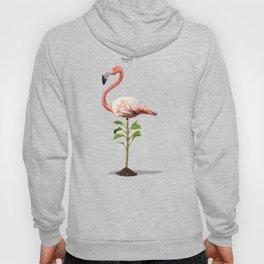 Planted Hoody