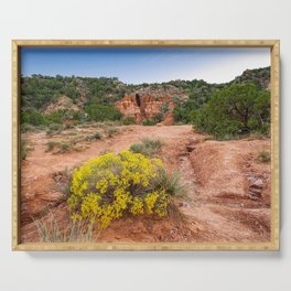 Palo Duro Canyon Cave and Wildflowers Serving Tray