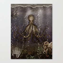 Octopus' lair - Old Photo Canvas Print