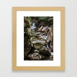 Nature's path Framed Art Print