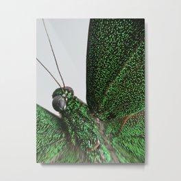 Butterfly Micro Photograph Green Emerald Metal Print