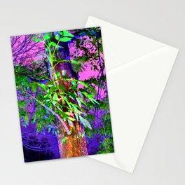 Magic Light at Night Stationery Cards
