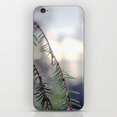 sunset in the woods. iPhone Skin