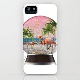 Vacation Globe iPhone Case