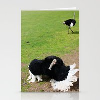 ostrich Stationery Cards featuring ostrich by Ezgi Kaya