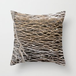 prickly on the outside - squishy on the inside Throw Pillow