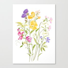 yellow pink white and  purple windflowers 2020 Canvas Print