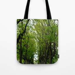 Tree Lined Walkway Photography Print Tote Bag