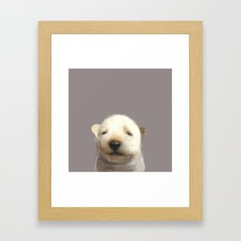 Jindo puppy runny nose Framed Art Print