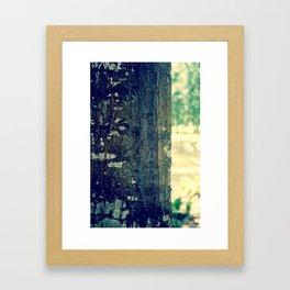 TreeBark Framed Art Print