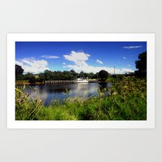 Life in the Gippsland Lakes & River System Art Print