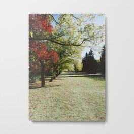 October Colours Metal Print