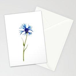 Simple Cornflower Stationery Cards