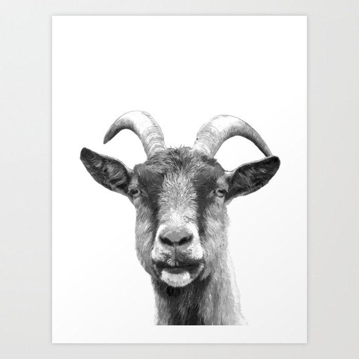 Black and White Goat Art Print