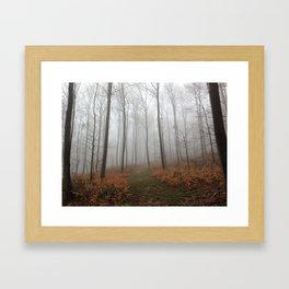 Nebel 2 Framed Art Print