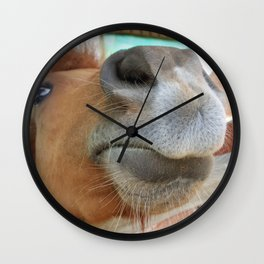 Sweet Tea in the Morning; Funny, Beautiful Horse color photography / photographs wall decor Wall Clock