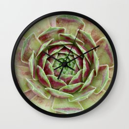 Succulent Wall Clock