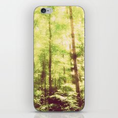 Untamed Forest iPhone & iPod Skin