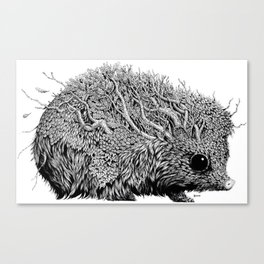 Leaf Hedgehog Canvas Print