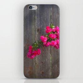 Curious rose iPhone Skin